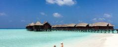 Destination les Maldives : 3 idées de séjour pour des vacances mémorables